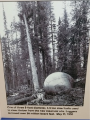 TimberBall