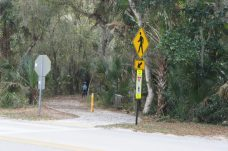 Walking/Biking path into town